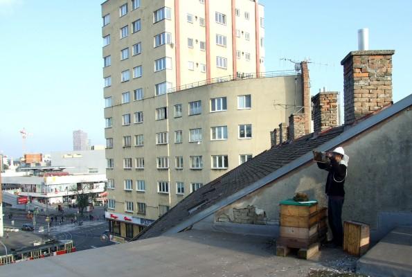 Úľ na streche bratislavskej Starej tržnice. FOTO - Živica