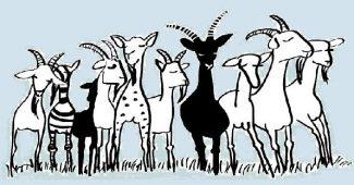 Adoptuj si kozu